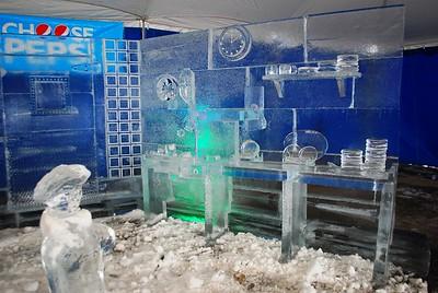 1-25-15 Ice 017