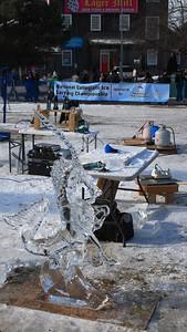 1-25-15 Ice 036