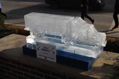 1-25-15 Ice 003