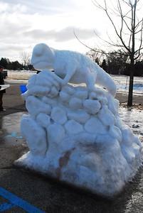 1-25-15 Ice 062
