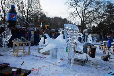 1-25-15 Ice 043