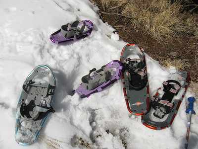 Stumbling upon a snowshoe graveyard?