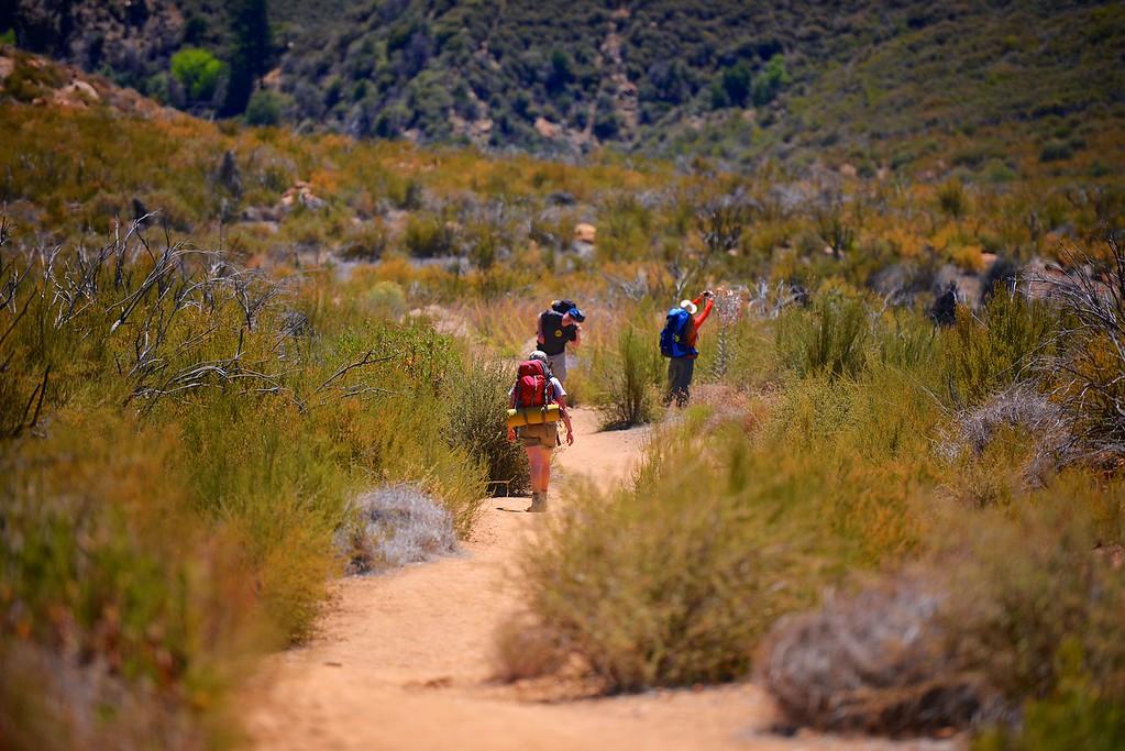 Sespe Creek Hike 005