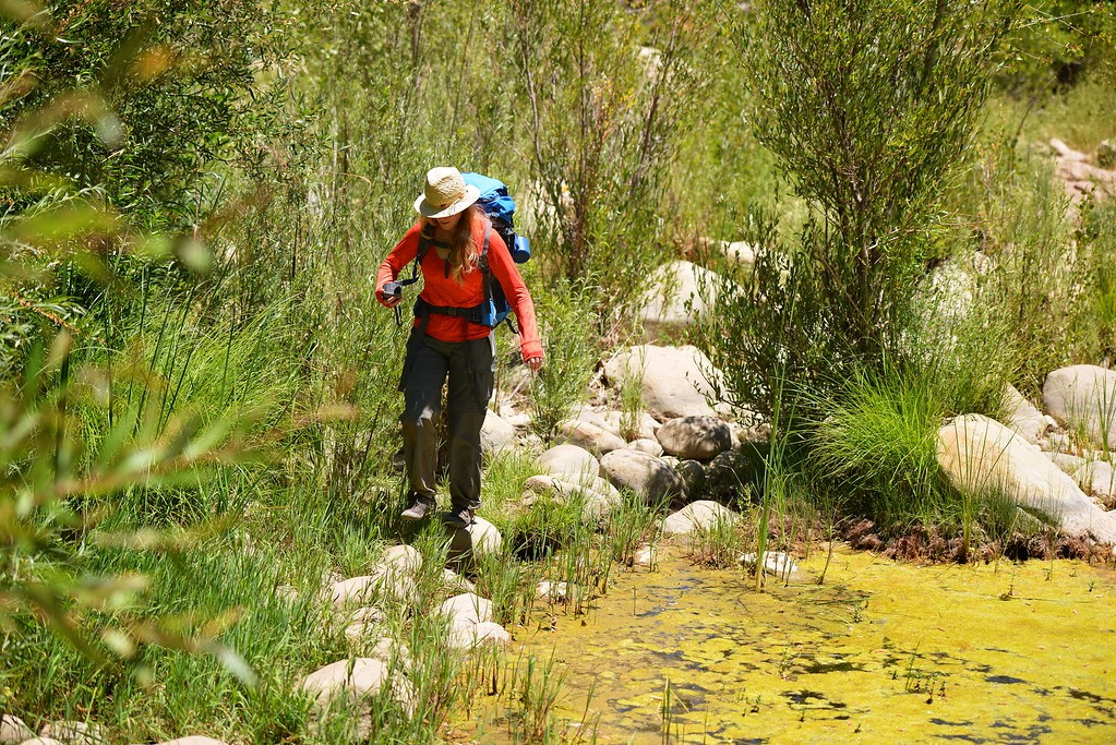 Sespe Creek Hike 022