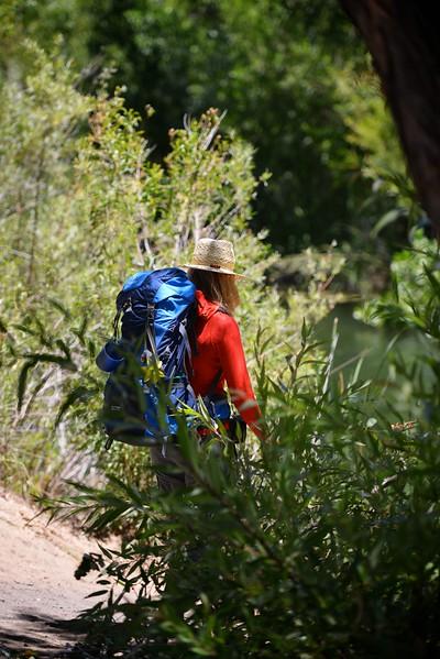 Sespe Creek Hike 014