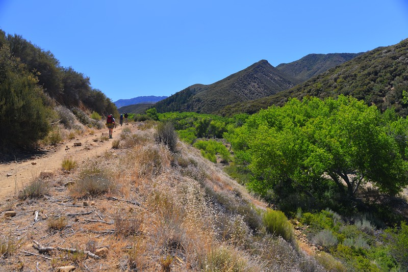 Sespe Creek Hike 002