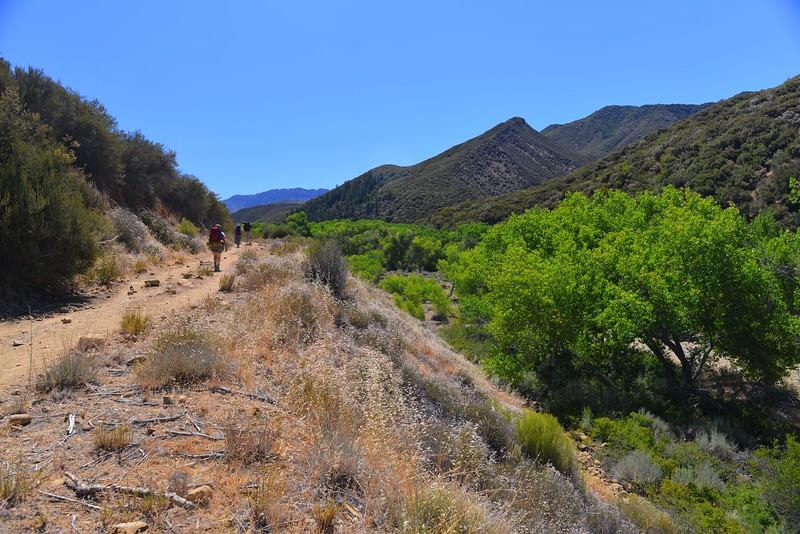 Sespe Creek Hike 002