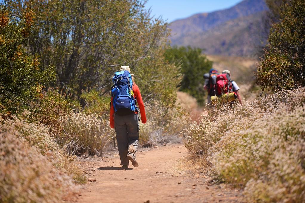 Sespe Creek Hike 019
