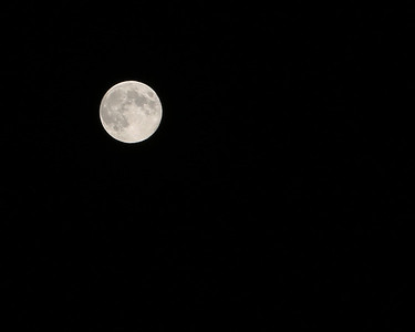 Blue Moon 8/20/13