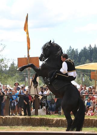 Renaissance Faire 08/17/2013
