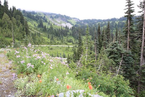 Mt Rainier Camping 8/15/2014