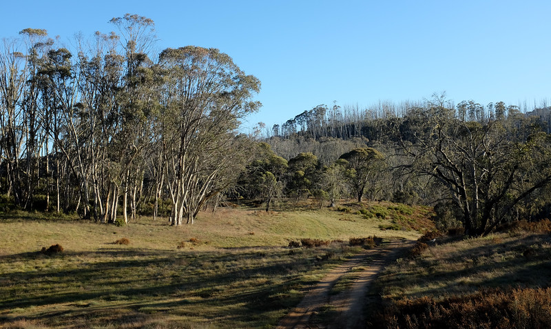 Davies Hut, Victoria.