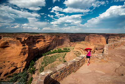 #29 - Canyon de Chelly, June