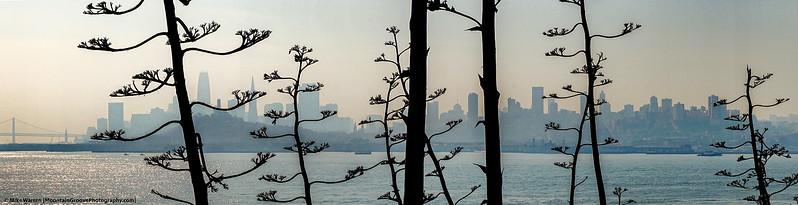 #30 - A smoky skyline.  San Francisco, October
