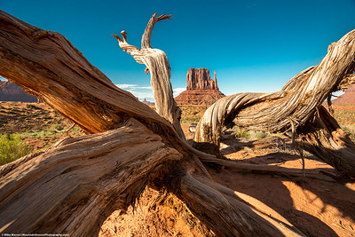 #8 - Monument Valley, June