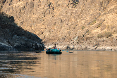 #11 - The Grand Poobah.  Lower Salmon River, August