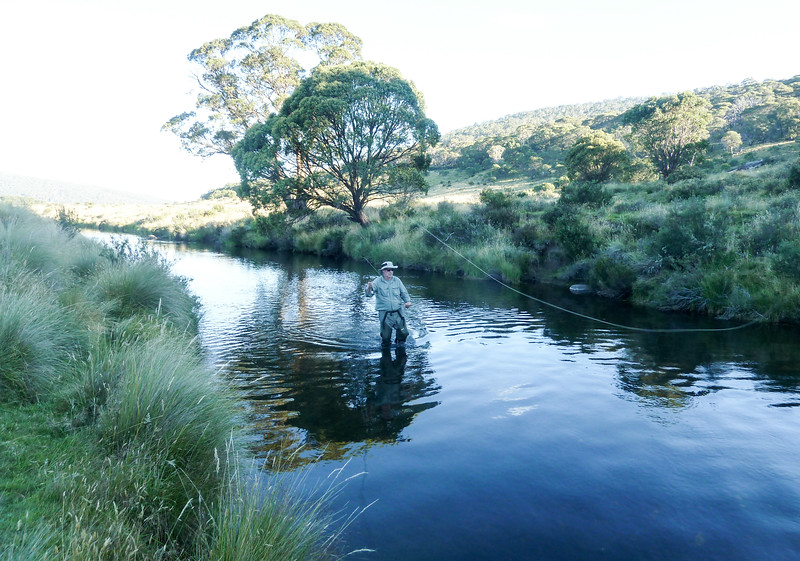 The Fly Fisherman. [Photo by Dani]