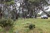 Gungarlin River Campsite