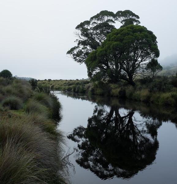 Gungarlin River