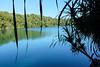 Lake Barrine, North Queensland