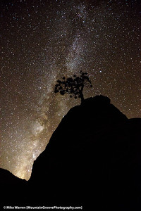 #2 - The Milky Way explodes into the desert sky, in an image taken on Checkerboard Mesa, Zion National Park, on my November workshop.