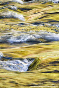 """#6 - The Virgin River lit by sunlight reflecting off of the yellow leaves of Cottonwood trees, taken during my November workshop.  As soon as the sunlight directly hit the river, the color disappeared.   Approximately a 1"""" exposure with a small aperture for depth of field."""