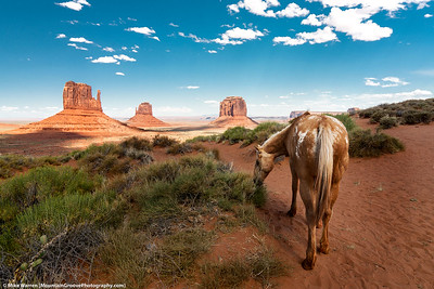 #5 - Monument Valley, June