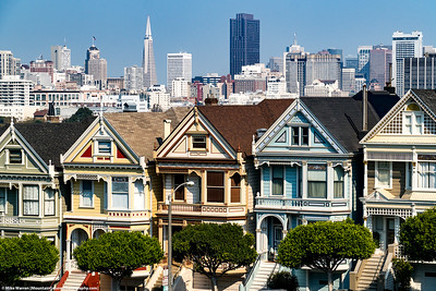 #47 - Painted Ladies and SF skyline.  San Francisco, October