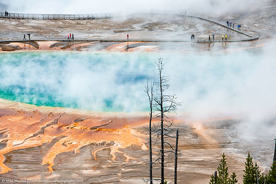 Grand Prismatic Spring, Yellowstone, taken in May.