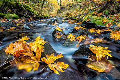 #4 - Gorton Creek, Columbia River Gorge, OR.  I was crouched low in the creek to obtain this image.  Thanks to Nitin Kansal for seeing the photographic possibilities of this location.  Tripod, f/11, 5.0, ISO50, -2/3EV, CPL