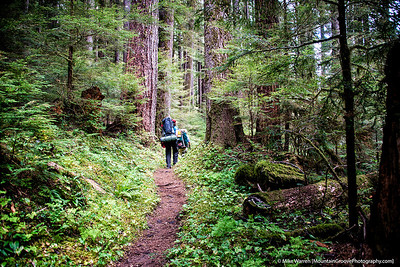 Our first day was through the old growth forest of the Sol duc drainage.