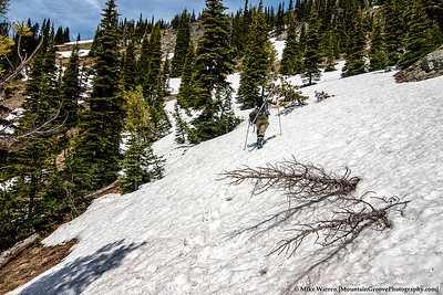 About 1000' gain, to the top of Silver Basin.  Some snow, but mostly . . .