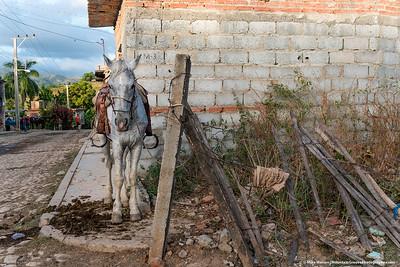 #29 - November, Trinidad, Cuba