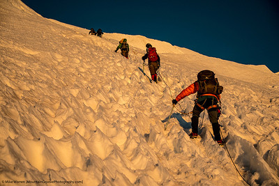 Climbing sun cups for 2000'