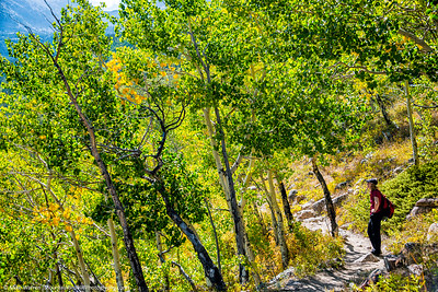 Fall colors just starting to turn.