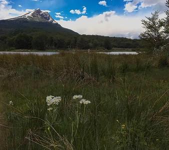 Ushuaia & Tierra del Fuego