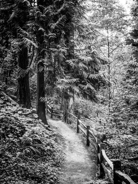 Portland Photo walk 01 - 0013