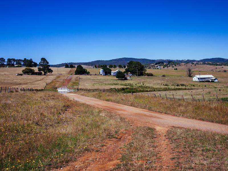 Fine wool country on the Monaro plain. Near Delegate, NSW.