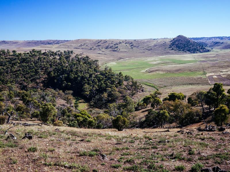 Monaro Tablelands, near Dalgety, NSW.