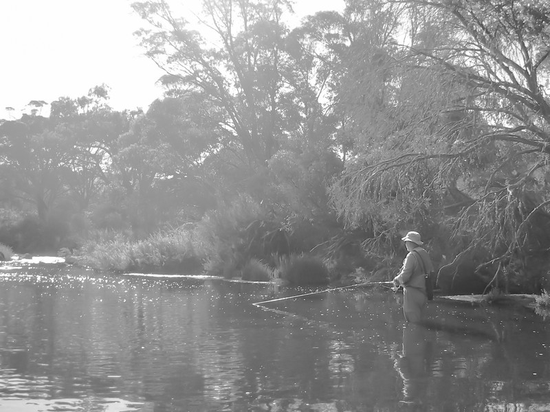 Fly Fishing, The Outpost, Murrumbidgee River