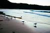 Seal Rocks, NSW Central Coast