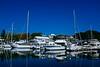 Port Nelson Lifestyle .....