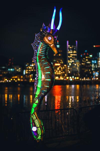 Portland Winter Light Festival 2019