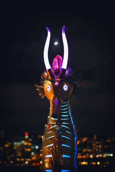 Portland Winter Light Festival 2019