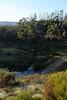 Davies High Plain, Alpine National Park, Victoria. Davies Creek.