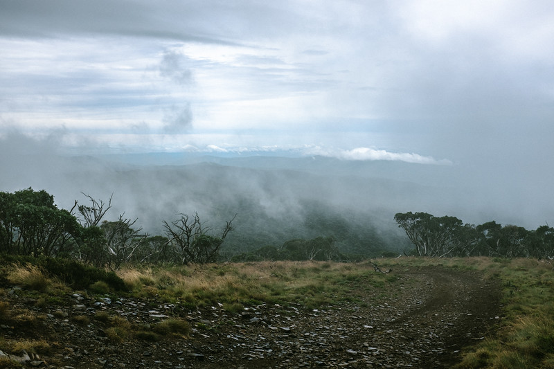 Summit at Mt Pinnibar. Elevation ~1800 m. Cold and wet.
