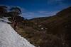 Cascade Trail; Thredbo, NSW