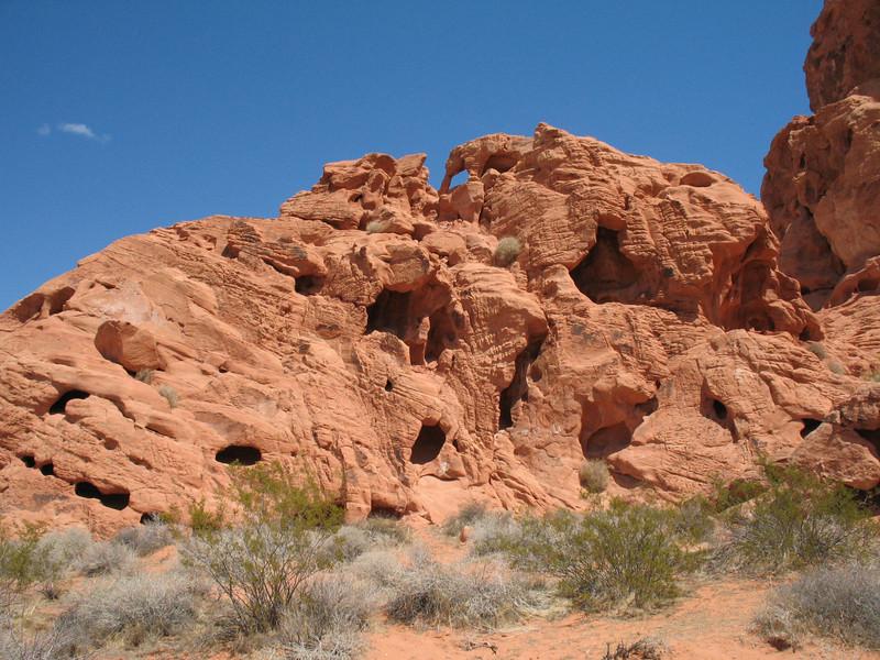 Redstone Dune Trail<br /> April 24, 2007