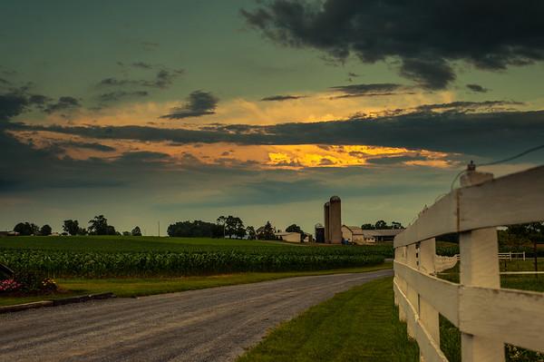 Amish Gold