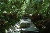 The stream that flows through the garden